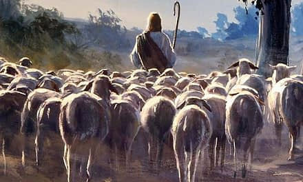 Free sheep under the true Shepherd